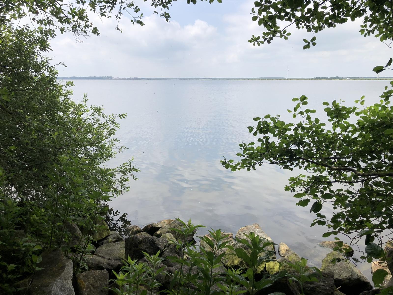 Eiland De Biezen zoekt een nieuwe beheerder - Overzicht van het water bij het eiland